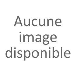 La paire de pare-soleil carton gris complet AP52